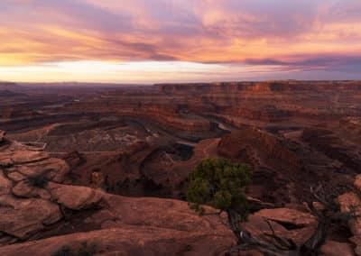 Secrets of Moab Desert
